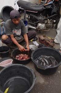 le marchand de poissons