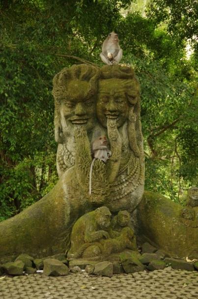 Ubud rizières et Monkey forest 103