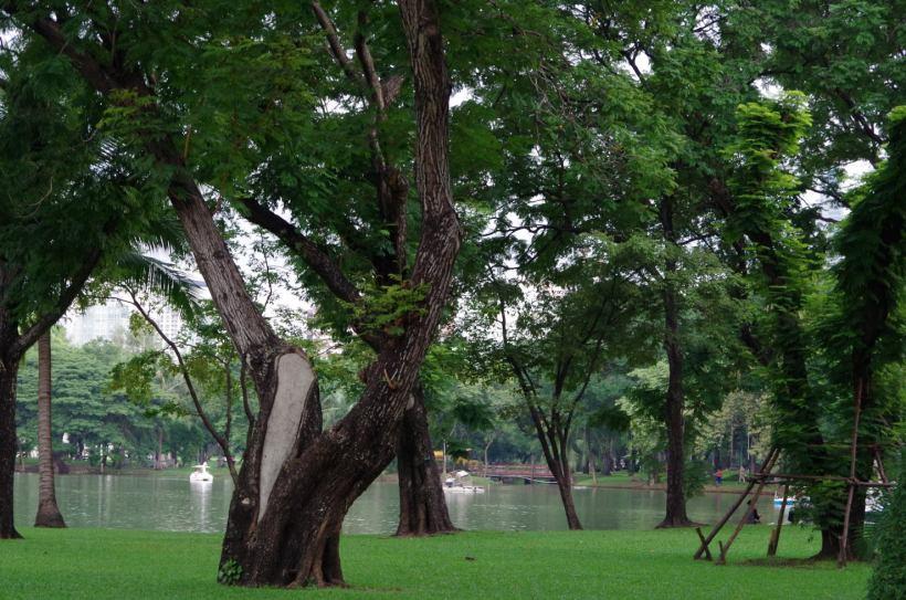 Klong Bangkok 624
