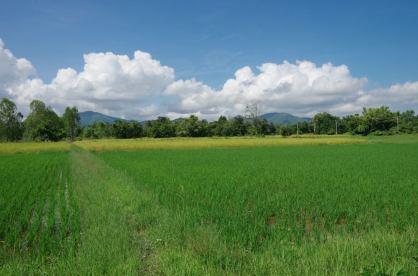 Sukhothai V2 027