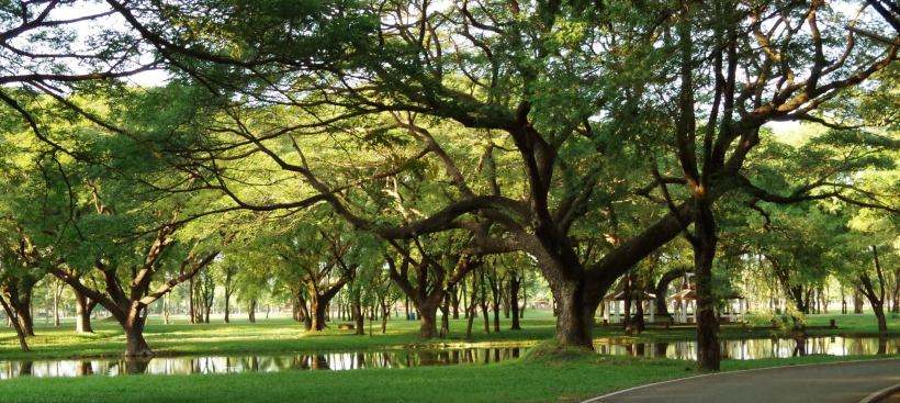 Sukhothai V2 293
