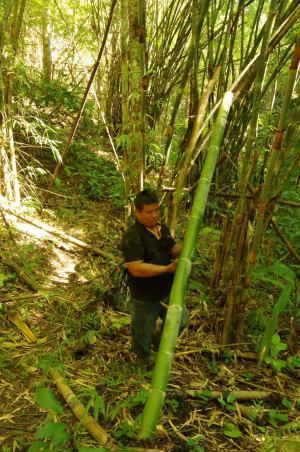 Thaton trek et descente de la rivière Kok 147