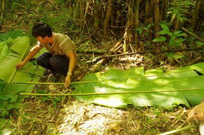Thaton trek et descente de la rivière Kok 159