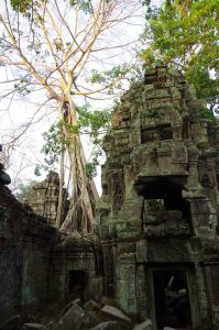 Angkor J4 042