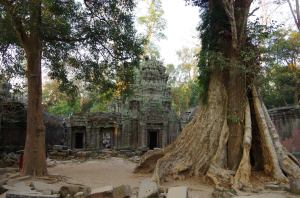 Angkor J4 050