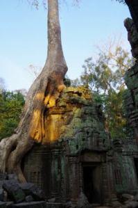 Angkor J4 060