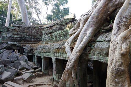 Angkor J4 144