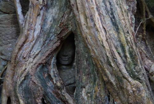 Angkor J4 160