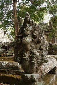 Angkor J5 231