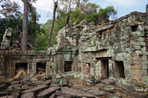 Angkor J5 250