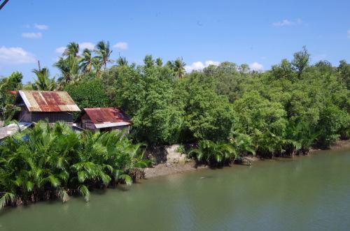 De Boracay à Tablas 246